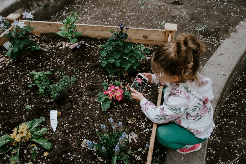 girl photographing flowers in the garden